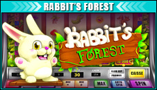 Rabbits forest
