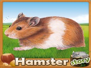 Fiche : Hamster Story